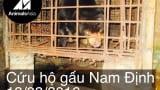 Cứu hộ cá thể gấu chó tại Nam Định