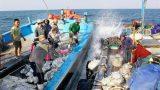 Nâng cao nhận thức về chủ quyền biển đảo cho ngư dân Nam Định