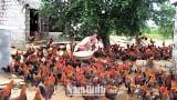 Làm giàu thành công từ nuôi gà thả đồng