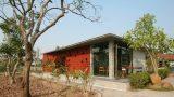 Ngôi nhà ở Nam Định lấy cảm hứng từ cây chuối