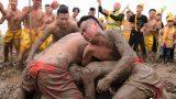 Nam Định: Trai làng trần mình cướp trái giữa ruộng bùn