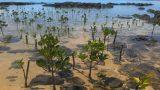Cần cụ thể hóa kế hoạch hành động ứng phó tại vùng ven biển Nam Định