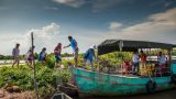 [Photo] Trải nghiệm vẻ hoang sơ của sông nước ngập mặn Vườn Quốc Gia Xuân Thủy Nam Định