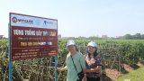 Nam Định: Bệnh nhân tiểu đường mục sở thị chất lượng Diabetna
