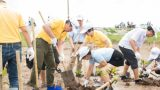 Nam Định: Trồng mới 500 cây xanh, bảo vệ rừng ngập mặn
