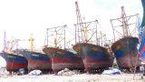 Công ty Đại Nguyên Dương( Nam Định) không bồi thường cho chủ tàu vỏ thép bị hư hỏng