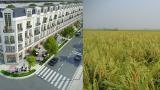 Điều chỉnh quy hoạch sử dụng đất đến năm 2020 tỉnh Nam Định