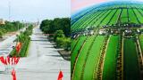 Cách nào để Nam Định về đích nông thôn mới sớm nhất nước?