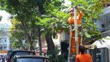 Hai đường bị cấm dừng xe sau tin nhắn gửi ông Đinh La Thăng