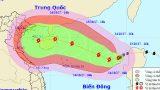 Công điện khẩn của Chủ tịch UBND tỉnh về việc triển khai khẩn cấp các biện pháp ứng phó với bão số 11