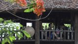 Nét đẹp cổ kính cây cầu Ngói 500 năm tuổi ở Nam Định