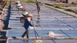 Thị trấn Quất Lâm (Nam Định): Hoàn thành tốt chỉ tiêu nông thôn mới