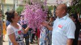 Nam Định: Trưng bày và hội thi hoa lan mở rộng lần thứ nhất năm 2018