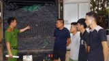 Tạm giữ Hình Sự 4 đốı tượnɡ quê Naм Định làm giả nhãn hiệu ống nước Tiền Phong