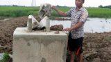 Nam Định:Nông dân tố cáo trụ điện gian dối