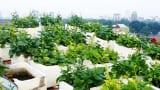 Nam Định: Ung thư giai đoạn cuối vẫn sống thêm được 12 năm nhờ thực phẩm sạch