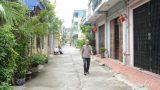 Bình yên ngõ phố Thành Nam