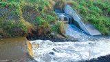 Nam Định: Xử phạt Công ty CP than Nam Vang 134 triệu đồng vì gây ô nhiễm môi trường