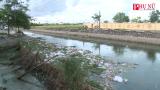 Hải Hậu (Nam Định): Ngập ngụa rác thải từ sông đến biển