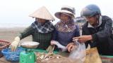 Ngư dân Nam Định khởi đầu năm mới khó khăn