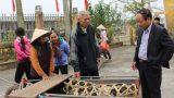 Nam Định: Tặng lợn giống cho hộ nghèo gây dựng lại sản xuất
