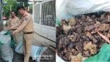 Xe tải chở 1 tấn tóp mỡ bốc mùi hôi thối từ Nghệ An ra Nam Định