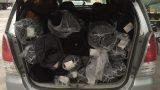 CSGT phát hiện hàng chục cây vải lậu được trở từ Nam Định về Thường Tín