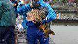 Nam Định: Làm giàu nhờ nuôi cá lồng