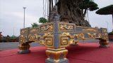 Xôn xao cây cảnh giá 10 tỷ, dát 5 lượng vàng quanh chậu của đại quê Nam Định