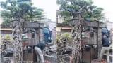 Xôn xao Nam Định: Cây sanh cổ bán kèm cổng nhà giá có đắt như đồn thổi?