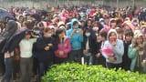 Vụ 4.000 công nhân ở Nam Định ngừng việc: Công ty chưa đáp ứng hết yêu sách