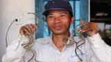 """""""Dị nhân"""" Việt Nam: Người đàn ông mang """"móng tay quỷ"""" suốt 35 năm"""