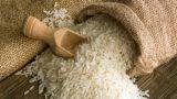 Sự nổi tiếng của gạo Tám xoan Hải Hậu