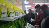 Gạo sạch Nam Định đến tay người tiêu dùng Hà Nội