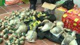Nghĩa Hưng: Xử lý nghiêm hành vi buôn bán, vận chuyển pháo nổ
