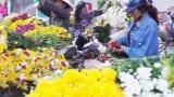 Chợ hoa đêm ở Thành Nam