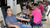 """Khoảng 1.500 người tham gia Ngày hội """"Những giọt hồng hè"""" tại Nam Định"""