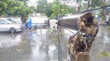 Thiệt hại lớn do bão số 1: Dự báo sai hay địa phương chủ quan?