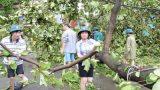 Giáo dục Nam Định: Thiệt hại sau bão không đong đếm được bằng tiền