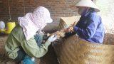 Virus cúm A (H5N8) có thể lây từ gia cầm sang người chưa phát hiện ở Việt Nam