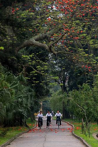 Những cô bé học sinh Thành Nam
