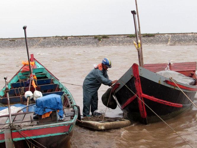 Đến chiều nay, nhiều tàu thuyền trên vùng biển Quất Lâm đã vào nơi neo đậu an toàn
