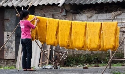 Hong tơ ở làng Cổ Chất.