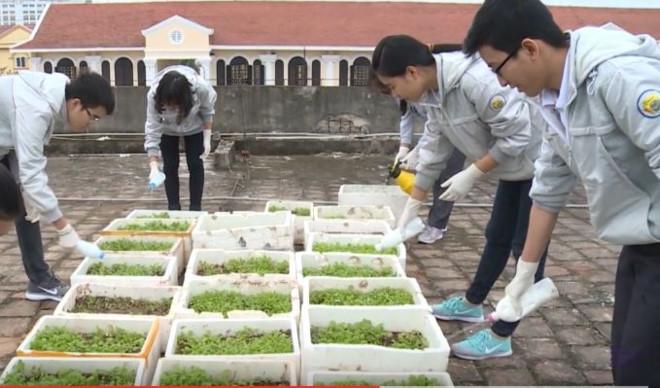 Nhóm học sinh trường THPT chuyên Lê Hồng Phong cùng nhau chăm sóc sản phẩm của mình. Ảnh cắt từ Clip.