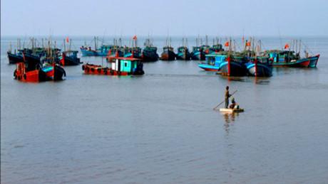 Đoàn thuyền đánh cá ở huyện Giao Thủy