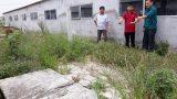 Huyện nông thôn mới ở Nam Định hưởng lợi từ dự án LCASP
