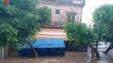 Từ bão số 10 cho thấy đê biển Nam Định mong manh