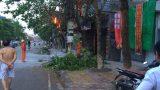 Tp.Nam Định: Chập cháy đường điện tại P. Hạ Long Tp. Nam Định