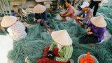 Chùm ảnh: Làng Chài xã Hải Triều huyện Hải Hậu