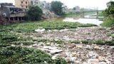 Khó khăn huy động nguồn lực khắc phục ô nhiễm sông Nhuệ, sông Đáy